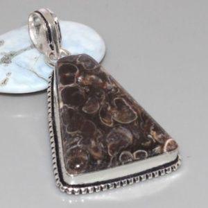Jewelry - Turritella Fossil Agate Pendant